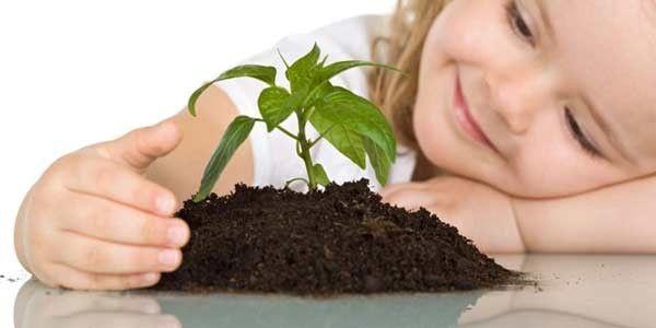 Проекты знакомства детей с растениями знакомства с инвалидами только одесса