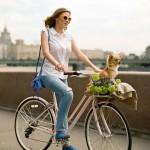 Женские велосипеды: особенности